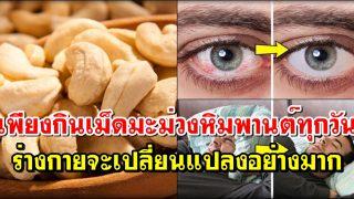 เพียงกินเม็ดมะม่วงหิมพานต์ ทุกวัน ร่างกายจะเปลี่ยนแปลงอย่างมาก