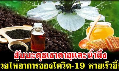 น้ำมันเทียนดำ(ฮับบะตุซเซาดาฮฺ) และน้ำผึ้ง ช่วยให้อาการของโควิด-19 หายเร็วขึ้น